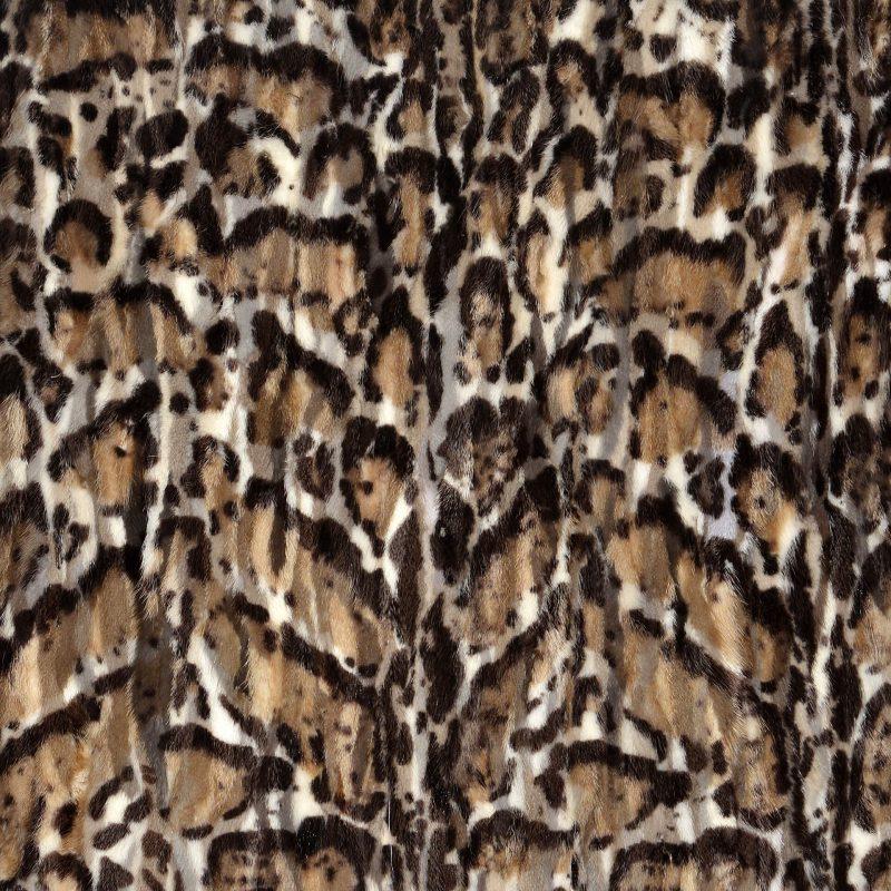 Visone Leopard